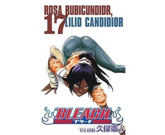 Bleach 17. Cilt - Tite Kubo - Gerekli Şeyler Yayıncılık